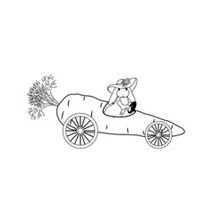 bunny driving carrot outline vector image