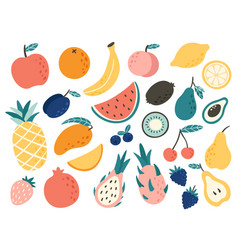 doodle fruits natural tropical fruit doodles vector image