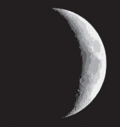 Half moon vector