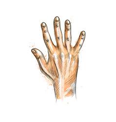 hand showing five fingers vector image