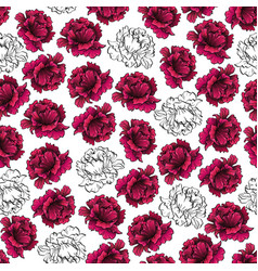 pattern with purple and white peony flowers vector image