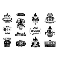 Set of wild forest and ecotourism labels vector