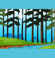 Trees and river in the forest vector