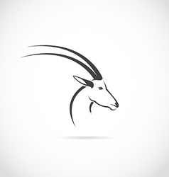 image of an deer head impala vector image