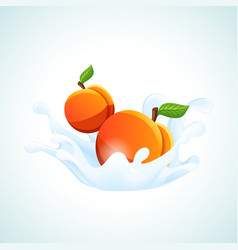 Apricots in milk splash vector image