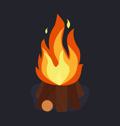 Bonfire and burning vector