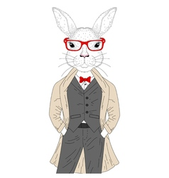 cute rabbit boy in elegant suit with coat glasses vector image