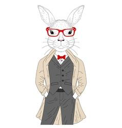 Cute rabbit boy in elegant suit with coat glasses vector