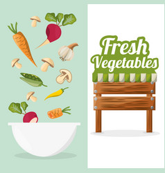 fresh vegetables bowl food market image vector image