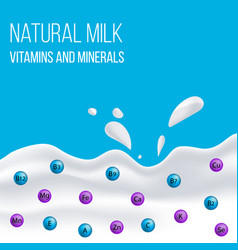 natural dairy and milk product vector image