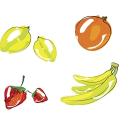 - set of fruits vector image