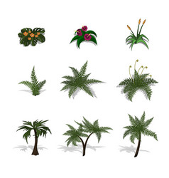 set of plants in isometric style vector image