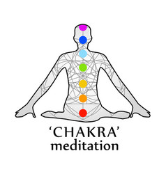 the seven chakras with their names vector image