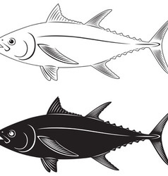 tuna fish vector image