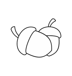 Two acorn icon outline style vector image