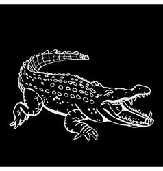 Hand-drawn pencil graphics crocodile alligator vector image