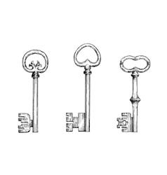 Vintage skeleton keys in engraving style vector