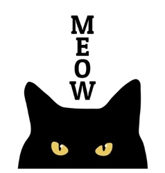 Black cat and meow inscription Print on clothes vector image vector image