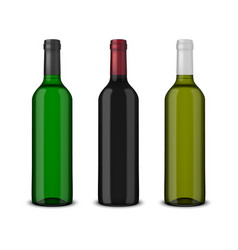 set of 3 realistic bottles of wine without vector image
