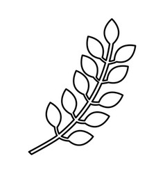 spike natural isolated icon vector image