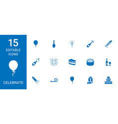 15 celebrate icons vector image