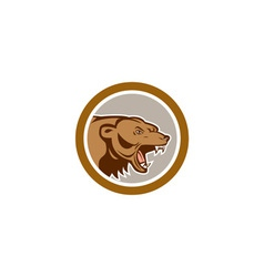 Angry Grizzly Bear Head Circle Cartoon vector image vector image