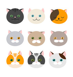 cat set of flat feline head icons vector image