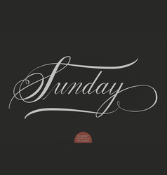 hand drawn lettering sunday elegant vector image