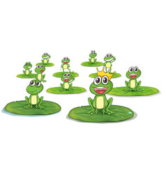 Happy frogs on lotus leaves vector