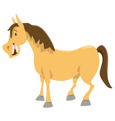 horse cartoon animal character vector image