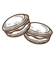 Macaroon dessert pastry food cookie isolated vector