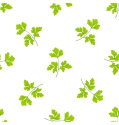 Seamless grass background parsley green leaves on vector