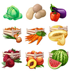 vegetables and fruits harvest in wooden boxes vector image