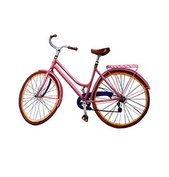Bike vector image vector image