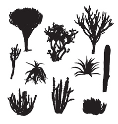 black silhouettes of cacti and aloe vector image