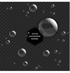 Abstract water drops isolated on black vector