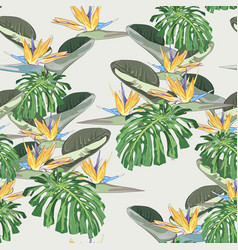 Bright tropical leaves with jungle plants vector