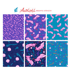 Collection seamless patterns with axolotl vector