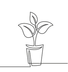 Continuous one line drawing plant in pot house vector
