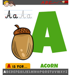 Letter a from alphabet with cartoon acorn object vector