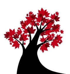 maple tree vector image
