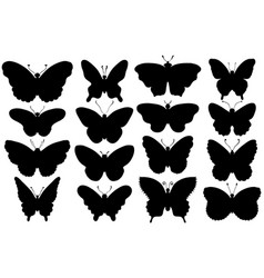 set of various forms of butterflies silhouettes vector image