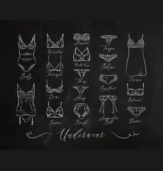 underwear classic icons chalk vector image vector image
