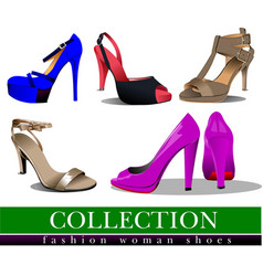 big collection of fashion woman pink shoes vector image