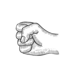 hand gesture fist vector image