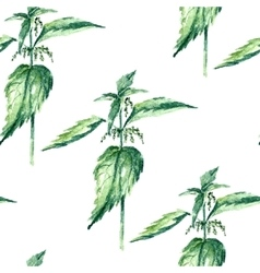 Watercolor nettle herbs seamless pattern vector