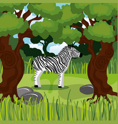 Wild zebra in the jungle scene vector