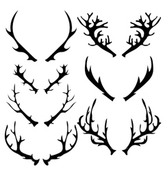 Different Horns vector image