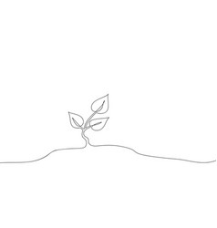 continuous one line drawing growing small tree vector image
