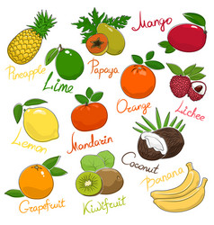 set of tropical and citrus fruits vector image